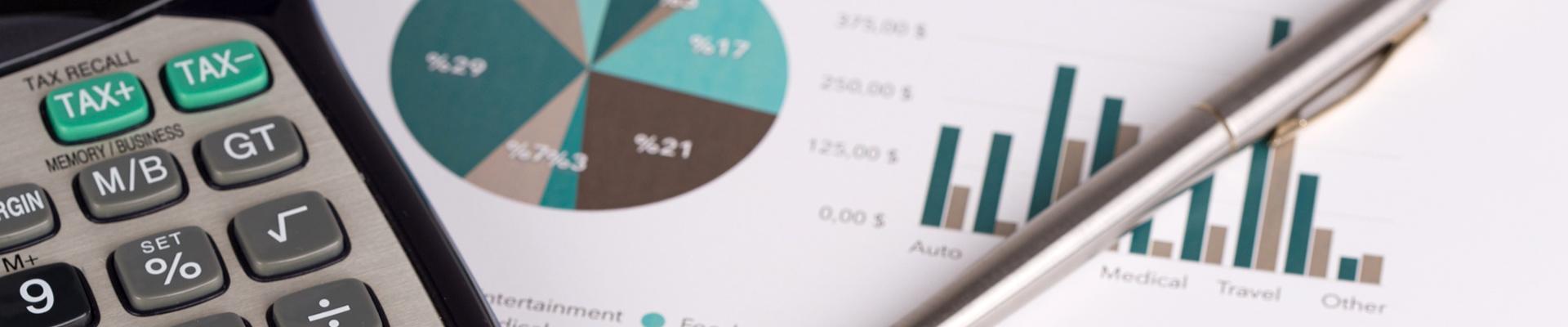 Analisi e revisione dei bilanci